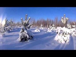 Ютуб охота на снегоходе фото 724-775